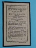 DP Hector D'HAESE ( Zoon Van VITALIS / Manssens ) Segelsem 5 Apr 1862 - 13 Feb 1894 ( Zie Foto's ) ! - Avvisi Di Necrologio