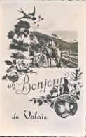 Suisse : Un Bonjour Du Valais, Jeune Fille, âne, Roses Et Hirondelle - VS Valais