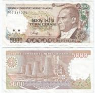 Turquía - Turkey  5.000 Lirasi 1990 (L1970)  Pick 198(II) Ref 872 - Turquia