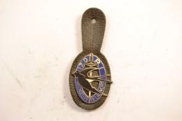 Insigne 170° Régiment D'Infanterie, Hirondelles De La Mort. 170 RI Fraisse Dos Lisse - Army