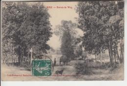 51 - WEZ - Entrée De Wez Animée - Francia