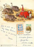 Warthogs And Santa Claus, Cartoon, South Africa Postcard Posted 1979 Stamp - Südafrika