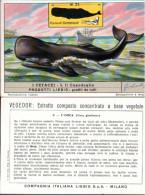 ! Chromo Italiana, Italienische Liebigbilderserie 418 Fischfang, Walfang, Whales, Balene, Fischerei - Liebig