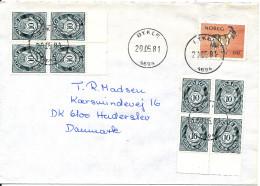 Norway Cover Sent To Denmark Bykle 20-5-1981 - Norvège