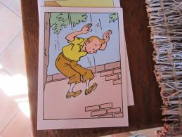 CARTE POSTALE TINTIN SAUTE DE L'ARBRE   HERGE - Tintin