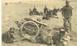 A209 Armee Belge Traction Canine - Leopoldsburg (Kamp Van Beverloo)