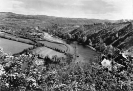 CPSM - CHATEAUNEUF DU FAOU - Des Jardins Fleuris De Belle-vue - Châteauneuf-du-Faou
