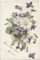 CPA - FANTAISIE ILLUSTREE - FLEURS .. VIOLETTES - Edition ... - Flowers