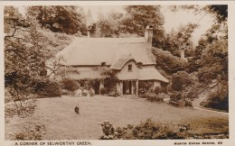 SELWORTHY - CORNER OF THE GREEN - England