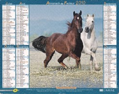 Almanach Du Facteur Lavigne 2010  Val D´Oise (chevaux) - Calendari