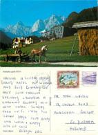 Kranjska Gora, Slovenia Postcard Posted 1988 Stamp - Slovenia