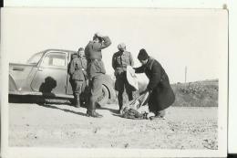 A201  --  DEUTSCHLAND  -  WW2  --  ORIGINAL PHOTO   -  RUSSIA,  42 `  SOLDATEN, OFFICER  -    9,3  Cm  X 6,2 Cm - 1939-45