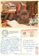 Boyds Bear Country Teddy Bear, Gettysburg, Pennsylvania, United States US Postcard Posted 2003 ATM Meter - Altri