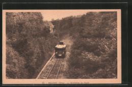 CPA Bellême, Micheline En Forêt, Train De Montagne - Spoorwegen