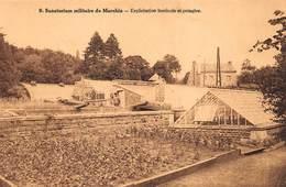 Sanatorium Militaire De Marchin       Exploitation Horticole  Et Potagère          A 2161 - Marchin