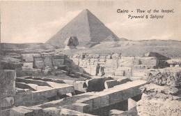 ¤¤  -  EGYPTE    -   LE CAIRE   -  CAIRO  -  Troupeau De Moutons  -  Allée Des Pyramides   -  ¤¤ - Cairo