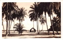 ¤¤  -   ETATS-UNIS  -  Carte-Photo  -  HAWAIIAN-ISLANDS   -  A Hawaiian Scène  -  ¤¤ - Big Island Of Hawaii