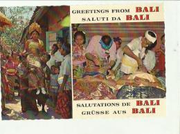 133100 GREETING FROM BALI - Cartoline