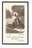 P 19.  E.H. MARTINUS  COUNE - °VEULEN 1873 / Priester Luik / Kapelaan Borgloon/ Pastoor Veulen - +VEULEN 1935 - Imágenes Religiosas