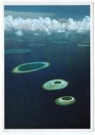 MALDIVES - IHURU/VABINFARU (PHOTO MICHAEL FRIEDEL No 23/58) / THEMATIC STAMP-ROYALTY - Maldive