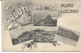 BUD013- MURO LUCANO - POTENZA - F.P - NON VIAGGIATA - Unclassified