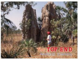 (138) Australia - NT - Giant Ant Hill - Animaux & Faune