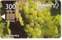 SLOVENIA SLOVENIJA PHONECARD 2004 SLO. AVTOHTONE TRTE ZELEN PRIMORSKA  GRAPE VINE TELEKOM CAT.NO. 542 - Slovénie