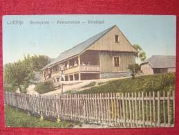 ROMANIA / COLIBITA / RESTAURANT / 1925 - Roumanie