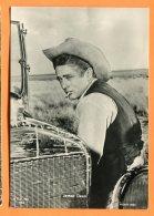 CAL1187, James Dean Il Gigante, Warner Bros, Film, Chapeau Western, GF, Non Circulée - Actors