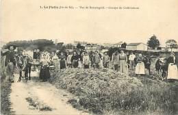 E-16 717 : LA FLOTTE EN RE  VUE DE BEAUREGARD GROUPE DE CULTIVATEURS - Ile De Ré