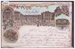 SOUVENIR DE VERSAILLES - LITHO - B ( TIMBRE ARRACHE AU DOS AVEC AMINCI ) - Versailles