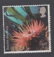 G B - 2007  Sea Life - Common Starfish (Asterias Rubens)  SG2701 Used - 1952-.... (Elizabeth II)