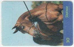 BRASIL B-890 Magnetic Telefonica - Animal, Horse - Used - Brésil