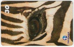 BRASIL B-944 Magnetic Telemar - Animal, Zebra - Used - Brésil