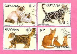1689  ~    1988  -  GUANA  N°  1769MJ / MM  Oblitérés - Guyane (1966-...)