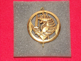 """Insignes Militaire """"de Béret Marine Infanterie Parachutiste -  """"ENGINEER REGIMENT """" - Armée De Terre"""