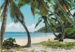 SEYCHELLES  ANSE INTENDANCE (dil276) - Seychelles