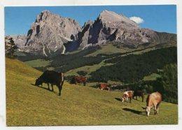 ITALY - AK280001 Dolomiti - Seiseralm - Non Classificati