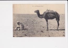 La Prière Au Désert N°283 - Algérie