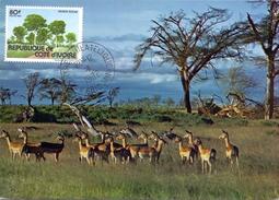COSTA D'AVORIO FAUNE AFRICAINE (AGO160161) - Costa D'Avorio