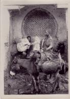 MEKNES (MAROC)    FONTAINE DJEIMAA LAMANE     JANVIER 1924   TRANSPORT A DOS D'ANE - Afrique