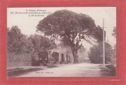 LE PIN DE BERTAUD  -83-  Environs De Ste Maxime-sur-Mer - CHEMINS DE FER - TRAINS - Un Train Decauville Au Pin Bertaud - Francia