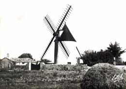 # Ile De Ré - Le  Morinand - Vieux Moulin - Ile De Ré