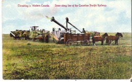 Threshing In Western Canada  Scene Along The Line Of The Canadian Pacific Railway. - Cultivation