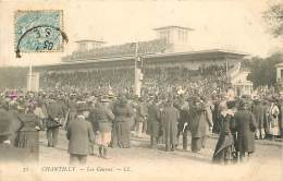 N-16 086 : CHANTILLY CHAMP DE COURSE HIPPISME  CHEVAL CHEVAUX - Chantilly