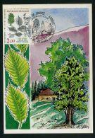 FRANCE : CARTES  MAXIMUMS , 1ER  JOUR  DU  21  SEPTEMBRE  1985  ORLEANS , A  VOIR . - Cartes-Maximum