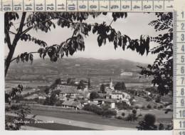 Melazzo Alessandria Panorama - Alessandria