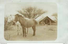 Deutsch-Südwestafrika, DSWA Original Foto A K Namibia - Namibia