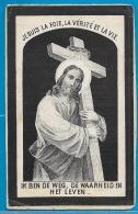 Bidprentje Van Franciscus Van Elsen - Heist-o/d-Berg - Kontich - 1845 - 1891 - Devotion Images