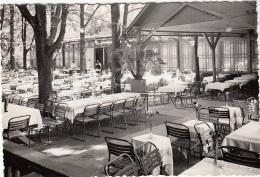 Hongrie - Budapest - Hüvösvölgy - Népkert - Jardin - Restaurant - Hungary